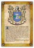 Apellido Chicot / Origen, Historia y Heráldica de los linajes y apellidos españoles e hispanoamericanos