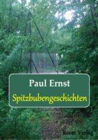 Spitzbubengeschichten (ebook)
