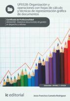Organización y operaciones con hojas de cálculo y técnicas de representación gráfica en documentos. ADGG0308 (ebook)