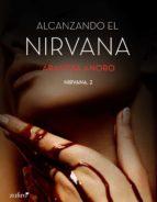 Alcanzando el Nirvana (ebook)