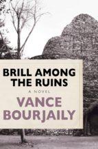Brill Among the Ruins (ebook)