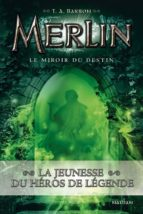 Le miroir du destin (ebook)