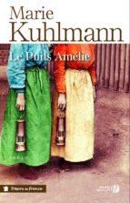 Le puits Amélie (ebook)