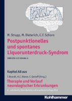 Postpunktionelles und spontanes Liquorunterdruck-Syndrom (ebook)
