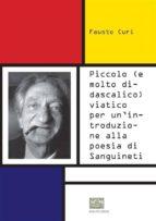 Piccolo (e molto didascalico) viatico per un'introduzione alla poesia di Sanguineti (ebook)