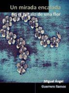 Una mirada encalada en el pétalo de una flor (ebook)