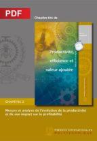 Mesure et analyse de l'évolution de la productivité et de son impact sur la profitabilité (Chapitre PDF) (ebook)