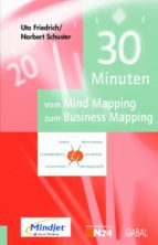 30 Minuten vom Mind Mapping zum Business Mapping (ebook)