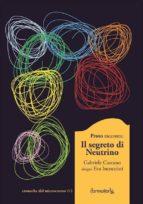 Il Segreto di Neutrino (ebook)