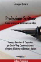 Professione Scrittore - Come scrivere e pubblicare un libro - Imparare il mestiere di Copywriter per Gestire Blog, Comunicati stampa e Progetti di Editoria tradizionale e digitale (ebook)