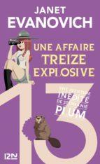 Une affaire treize explosive (ebook)