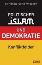 Politischer Islam und Demokratie (ebook)