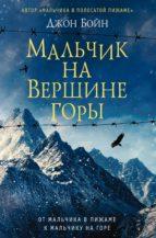 Мальчик на вершине горы (ebook)