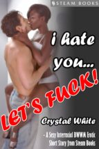 I Hate You... Let's Fuck! - A Sexy Interracial BWWM Erotic Short Story from Steam Books (ebook)