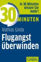 30 Minuten Flugangst überwinden (ebook)