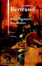 Brève histoire des choses (ebook)