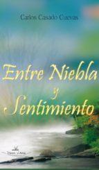 ENTRE NIEBLA Y SENTIMIENTO (ebook)
