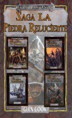 Saga: La piedra reluciente (ebook)