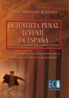 La justicia penal juvenil en España: legislación y jurisprudencia constitucional (ebook)