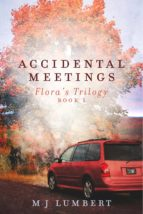 Accidental Meetings (ebook)