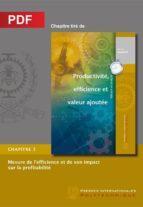 Mesure de l'efficience et de son impact sur la profitabilité (Chapitre PDF) (ebook)