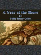 A Year at the Shore (ebook)