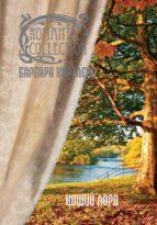Нищий лорд (ebook)