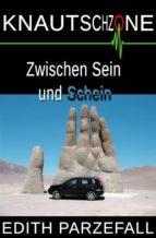 Knautschzone: Zwischen Sein und Schein (ebook)