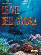 Le vie dell'ambra (ebook)