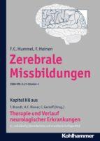 Zerebrale Missbildungen (ebook)