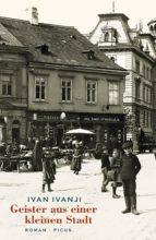 Geister aus einer kleinen Stadt (ebook)
