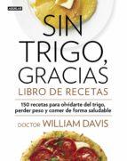 Sin trigo, gracias. Libro de recetas (ebook)