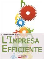 L'Impresa Efficiente. Strategie per Ottimizzare le Risorse e la Qualità dei Prodotti Aziendali. (Ebook Italiano - Anteprima Gratis) (ebook)
