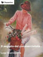 Il segreto del commercialista (ebook)