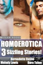 Homoerotica - A Sexy Bundle of 3 Gay M/M Erotic Stories from Steam Books (ebook)