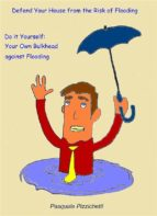 Defend Your House From The Risk Of Flooding - Do It Yourself: Your Own Bulkhead Against Flooding (ebook)