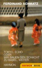 Tokyo, Echo oder wir bauen den Schacht zu Babel, weiter (ebook)