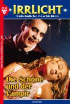 Irrlicht 33 - Gruselroman (ebook)