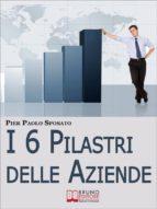 I 6 Pilastri delle Aziende. Come Costruire Solide Fondamenta per la Tua Azienda per Affrontare i Periodi di Crisi e Uscirne Vincenti. (Ebook Italiano - Anteprima Gratis) (ebook)