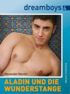 Aladin und die Wunderstange (ebook)