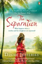 The Separation (ebook)