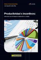Productividad e Incentivos (ebook)