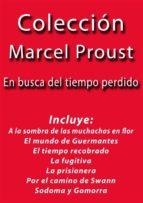 Colección Marcel Proust (ebook)