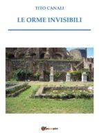 Le orme invisibili (ebook)