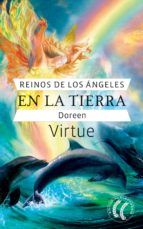 Reinos de los ángeles en la tierra (ebook)