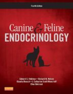 Canine and Feline Endocrinology (ebook)