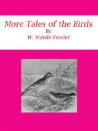 More Tales of the Birds (ebook)