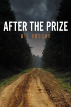 After the Prize (ebook)