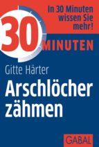 30 Minuten Arschlöcher zähmen (ebook)