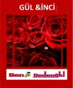 GÜL VE inci (ebook)